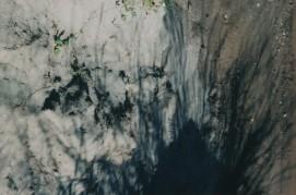 carpet 12