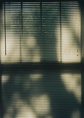 shadows103