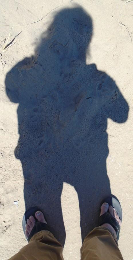 shadows116
