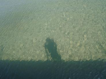 shadows118