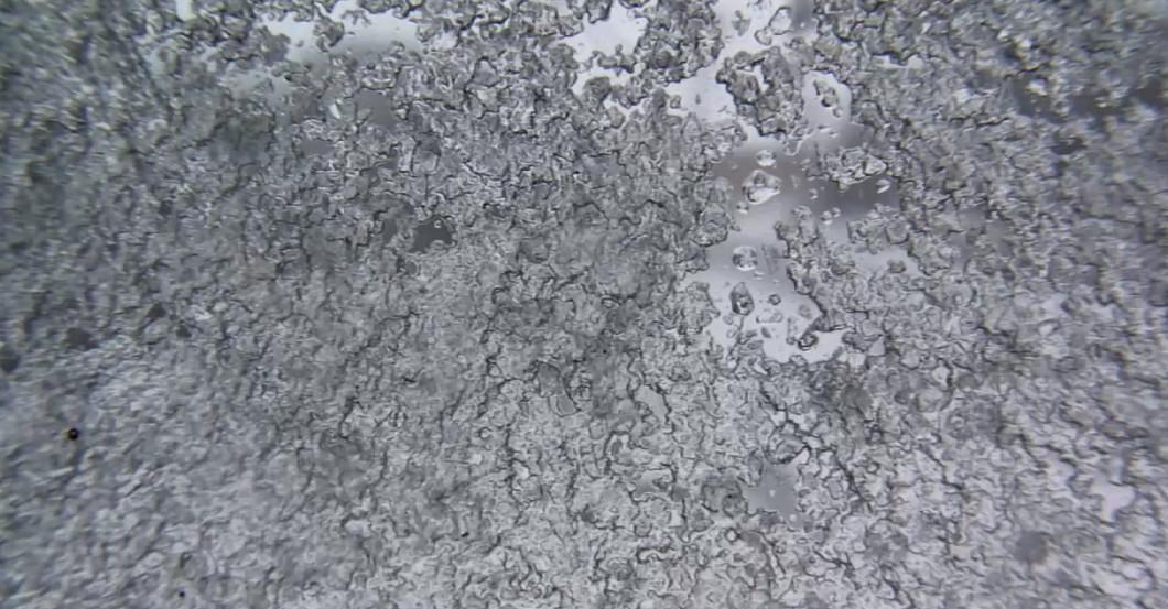 Camera Ice