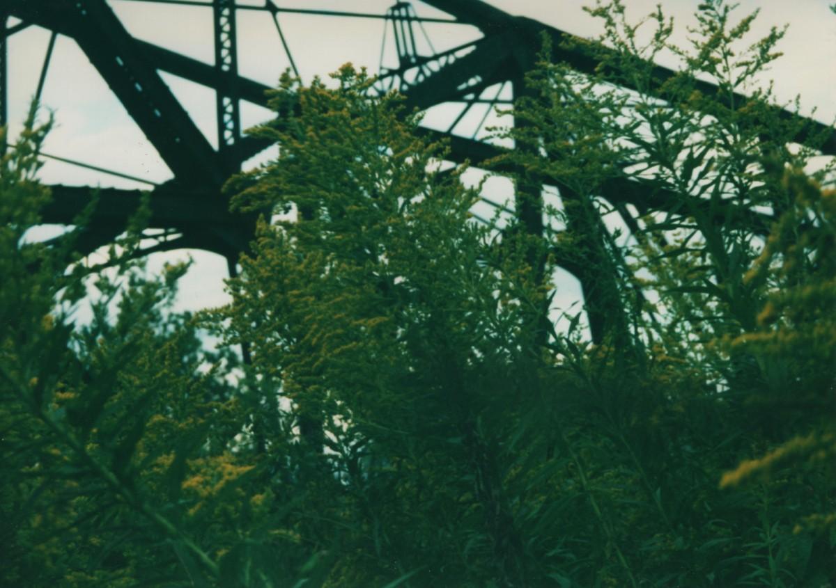 The Bridge to GooseIsland