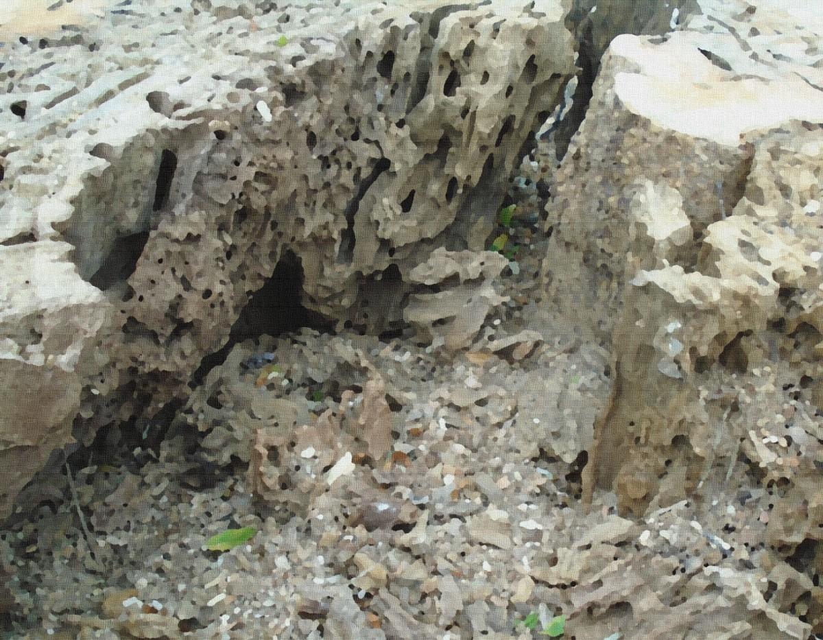 Canyon of Ruins