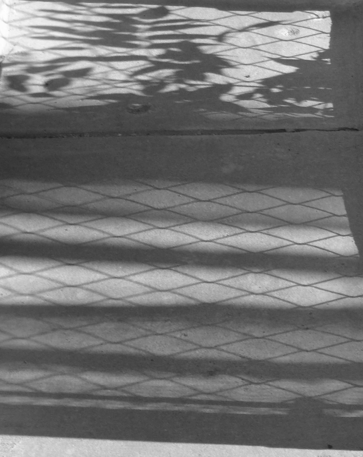 Gangway of Shadows