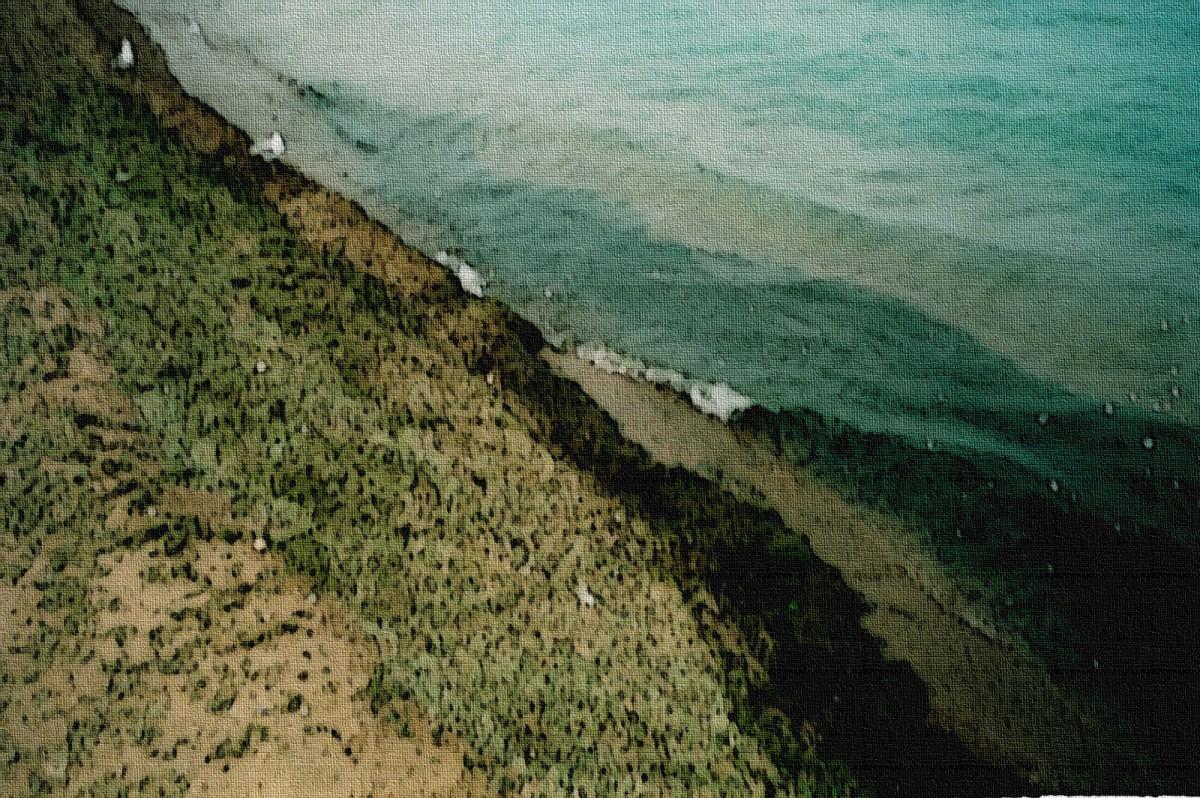 Algae Shore