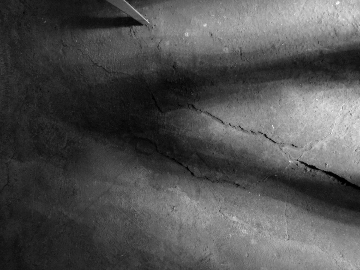 The Shadow of a MonstrousWishbone