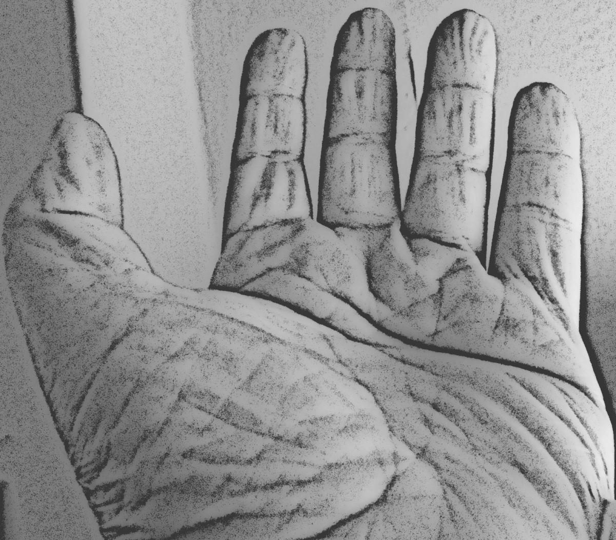 A Cat's Hand