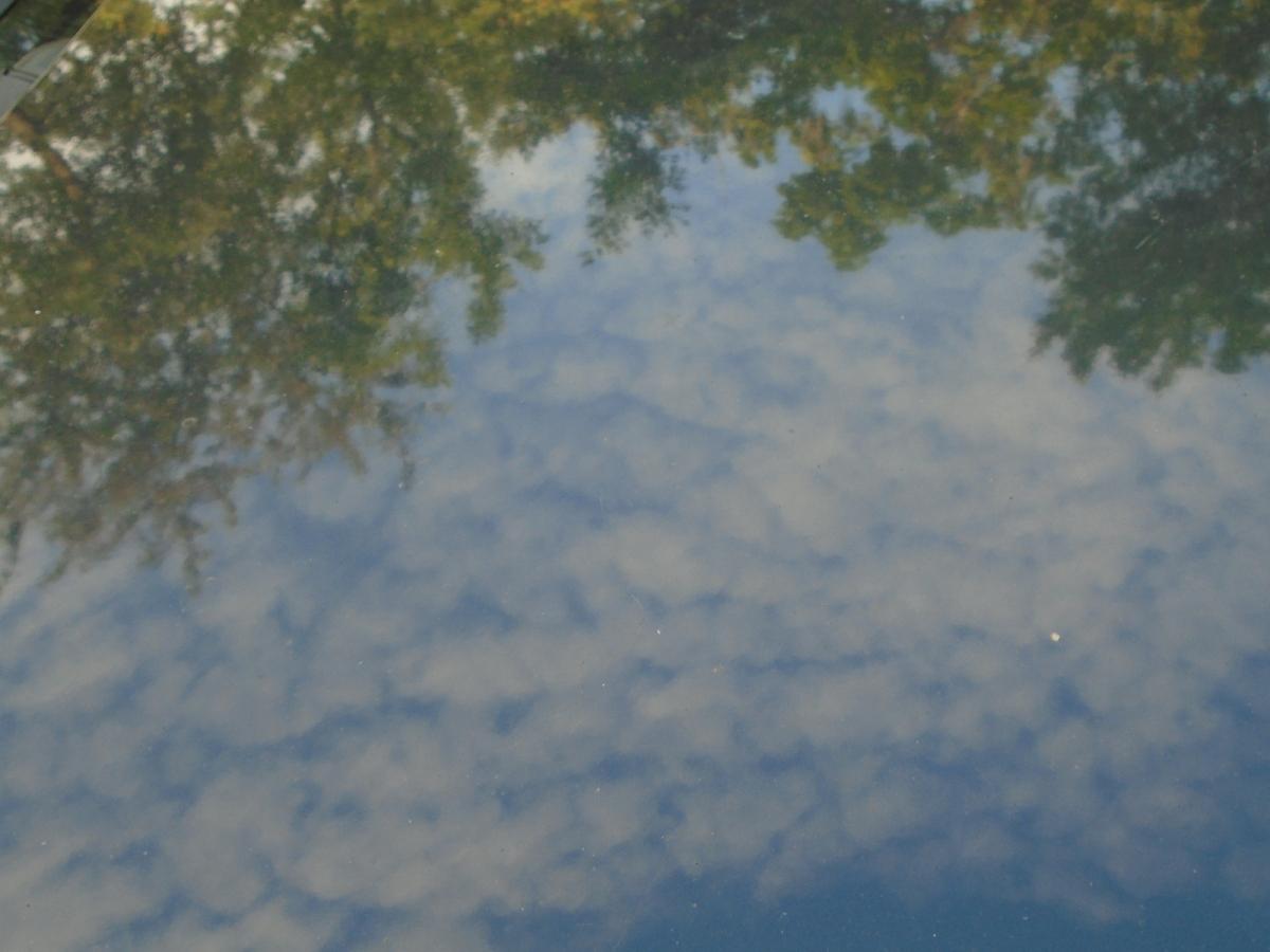 Reflections on Glenwood